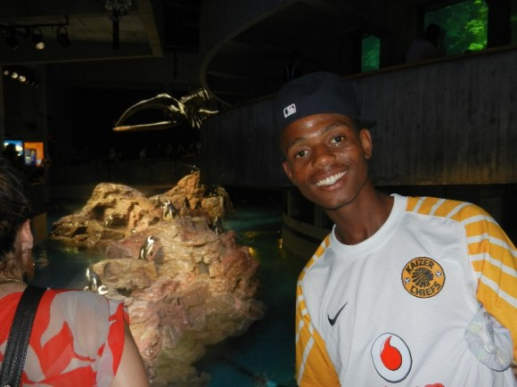 Watching Mtuseni become an excited kid at the aquarium, just like when we were in Cape Town. He loves penguins (and sharks). In another life maybe should have been a marine biologist, though we need to get him over his fear of the sea.