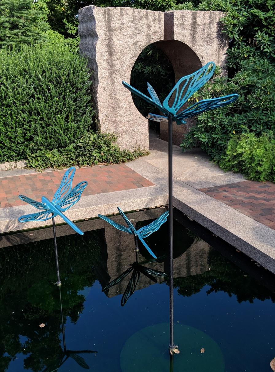 smith dragonflies