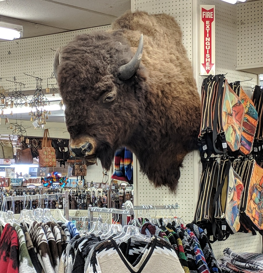 clines buffalo