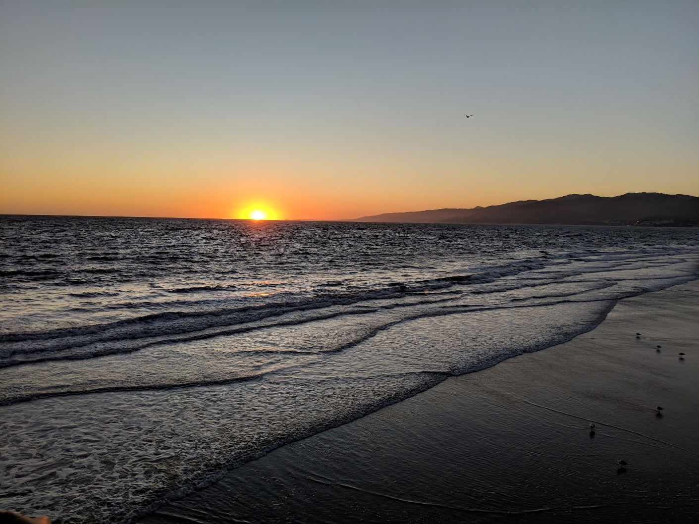 sm sunset