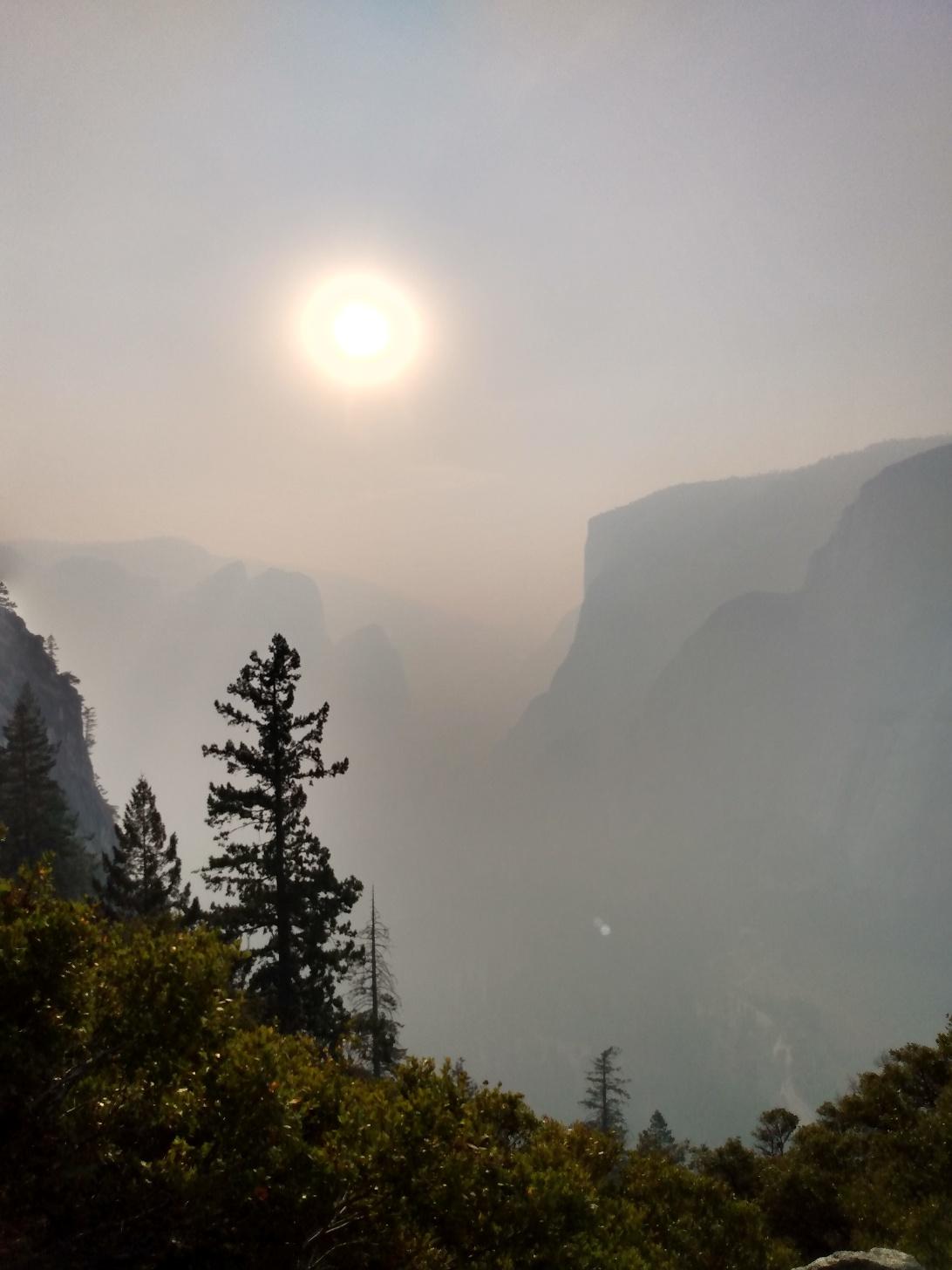 four mile trail sun