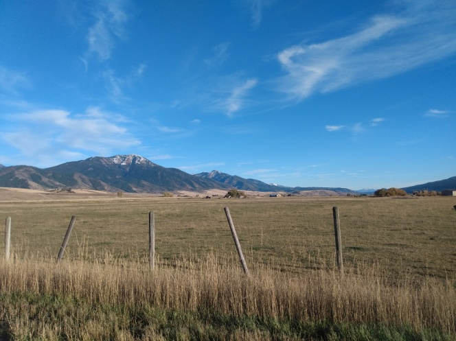 woming pasture